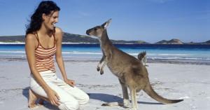 Australia salbatica