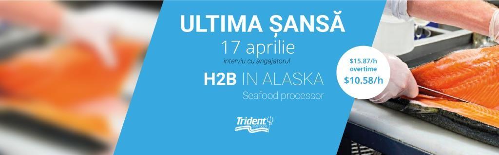 seafood-h2b-1024x320